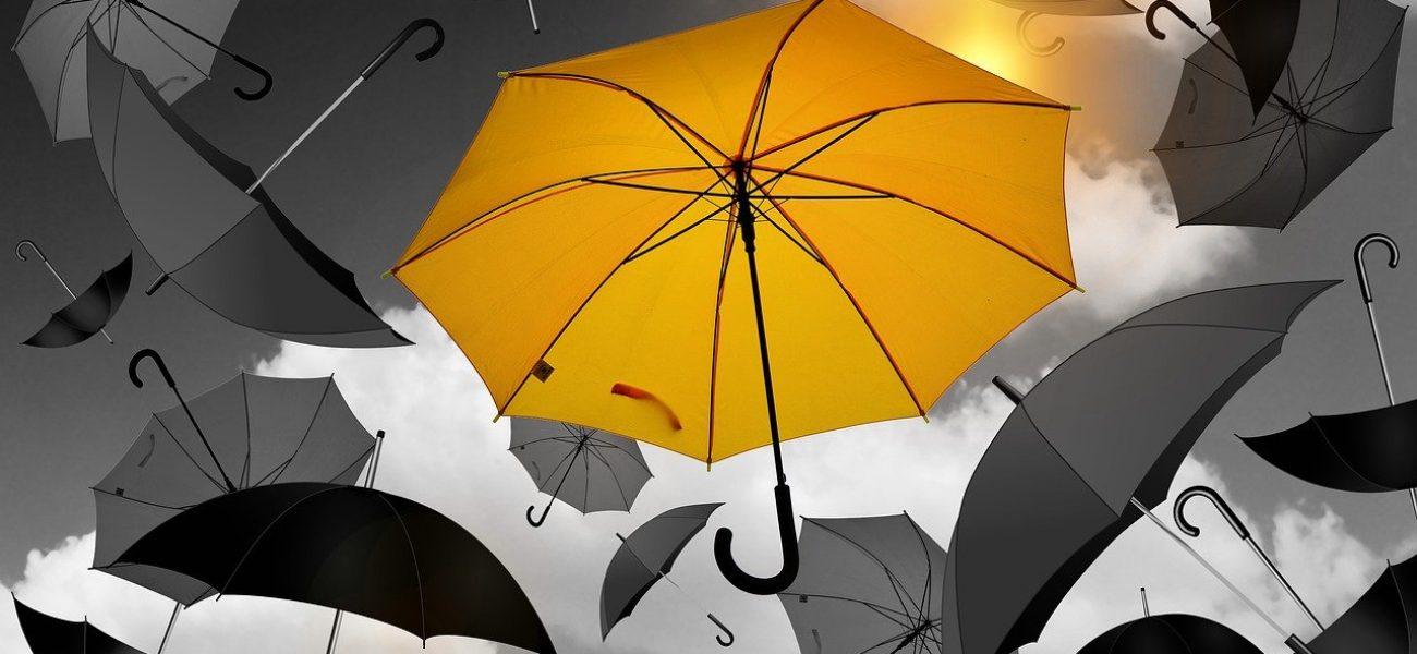 umbrella-portada
